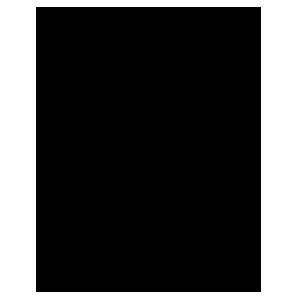 balance-transfer-icon