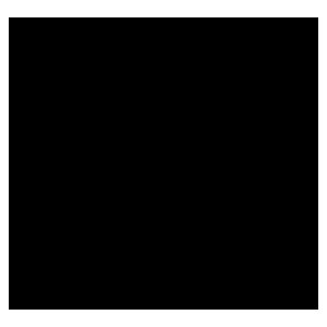 burglary-insurance-icon